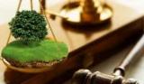 Квартиросъемщика, который не платит за землю, представлены в суд