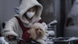 Тысячи домашних животных на мель в Ухань спасены любителей животных