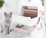 Кошка не в лоток что делать? Как выбрать лоток для кошки? Советы Кошки-Психолог